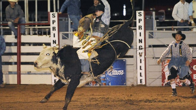 The Springville Rodeo starts Friday, leading of a busy community calender.