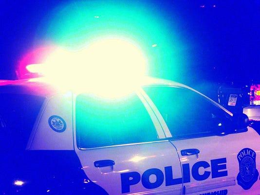 LOGO police