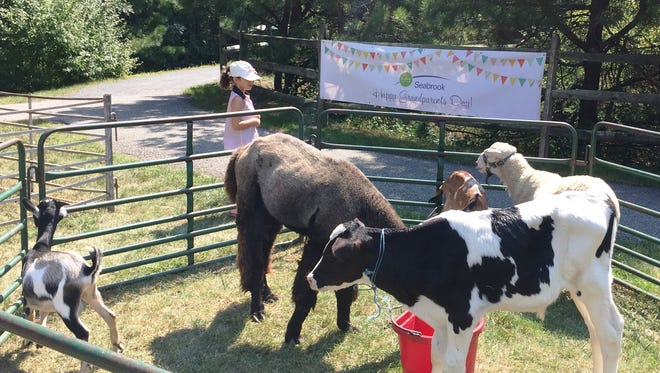 Petting Zoo at Seabrook Grandparents Day