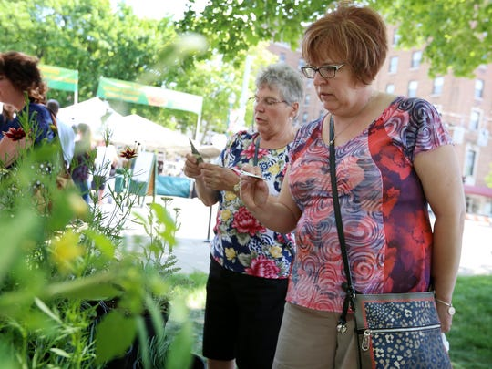 Gloria Biesen, of Lacrosse, Wisc., and Rita Biesen, of Painted Post, look through potted flowers at Mann's Country Garden booth Thursday at Wisner Market.