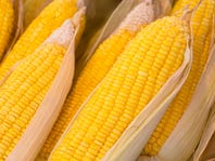 American Legion Post 38 Corn Roast