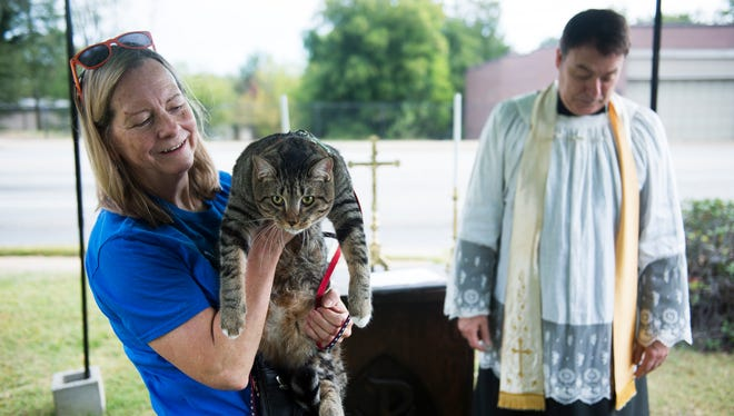 DeeAnn Barton holds her cat Trump after Father Lawrence Holcombe blessed him during the annual St. Francis Day Blessing of the Animals on Saturday, Oct. 7 at Holy Trinity Anglican Church.