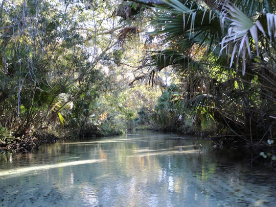 The Juniper Springs Run and is considered one of the