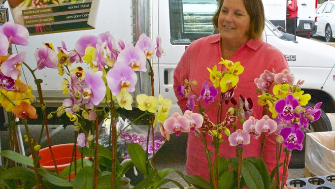 Catharine Barr admires colorful orchids for sale at the MPC farmers' market.