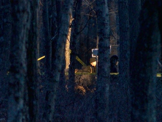 Investigators are shown in Colliers Mills Wildlife
