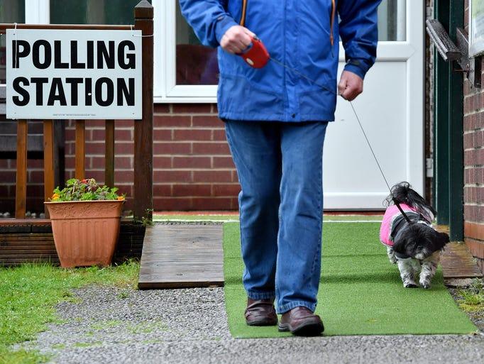 Dog Walks On Anglesea