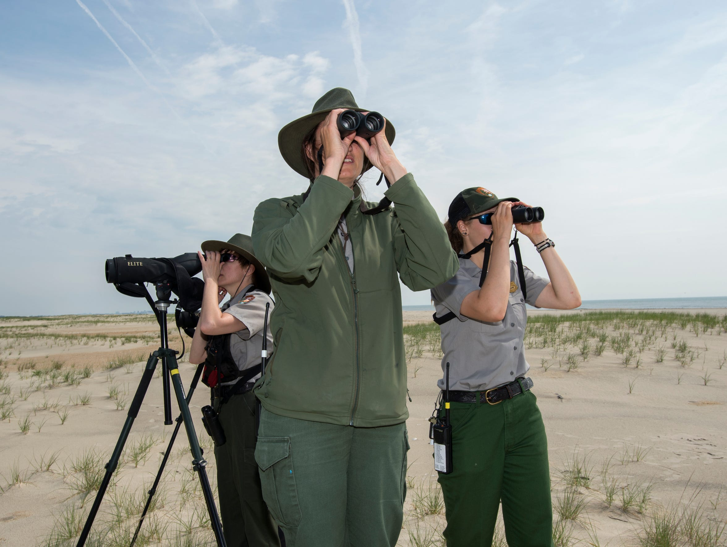 le- Assateague Rangers 9802.jpg