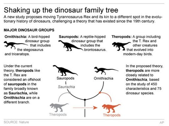 Graphic shows reworking of dinosaur family tree based on new theory.