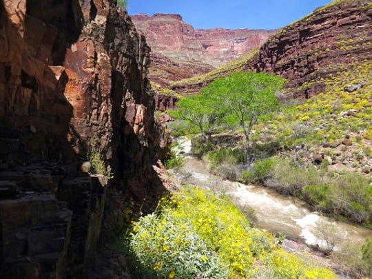 This Sunday, April 16, 2017, photo provided by the National Park Service shows Tapeats Creek in Grand Canyon National Park in Arizona. Authorities are searching for Jackson Standefer, 14, and Lou-Ann Merrell, 62, after the pair lost their footing Saturday and fell into the water during a family trip in a remote area of the Arizona park.
