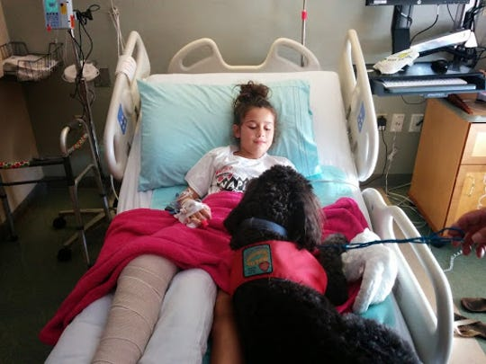 Summer's Child Life specialists gave her books and brought in a pet therapy dog to spend time with her. Trainers will work with specialists to bring in dogs if the child is comfortable.