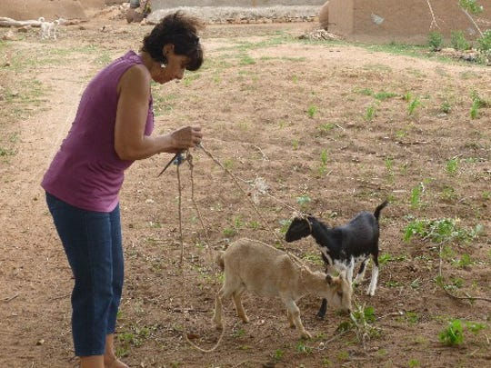 Siham Jasmund checks over two female breeding goats