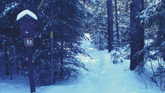 A recreational trail winds through the Chequamegon-Nicolet National Forest.