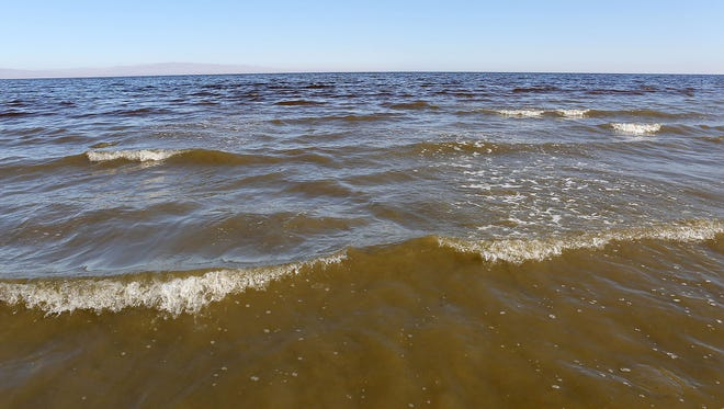 Small waves lap on the Salton Sea's western shore.