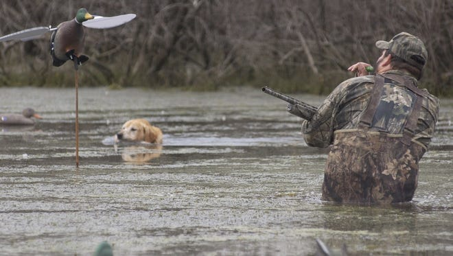 The Central Louisiana Retriever Club will host its first Duck Dog Tune-Up and Demo at Buhlow Lake on Saturday, Nov. 12, from 9 a.m. to 1 p.m.
