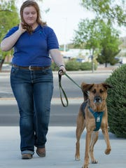 Allison Jenkins walks with her dog Koda, 2 1/2, near Better Life Natural Pet Foods, 315 S. Telshor Blvd., where she works. Jenkins said it was trial and error to find the right food  combination for Koda who needs a special diet.