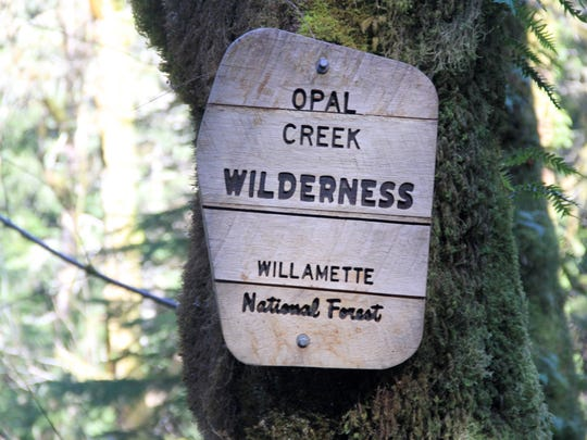 As you hike the Whetstone Mountain Trail, you'll pass this sign denoting the entrance of the Opal Creek Wilderness.