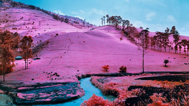 "Richard Mosse made this photograph, ""Men of Good Fortune,"" in 2011. Mosse's show at iMOCA opens Friday."
