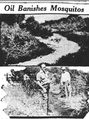 Mosquitoes seem to plague year-after-year. A pair of 1932 photos show attempts at eradicating the pests with petroleum oil  along a Tempe drainage ditch.