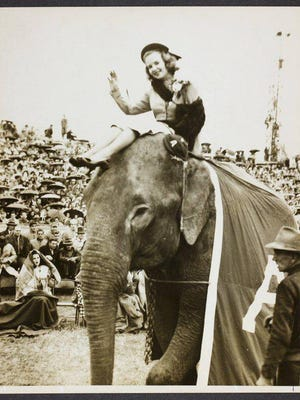 Sue Donegan, 1947 UA Homecoming Queen, rode Alamite the elephant along the sidelines at Denny Stadium.