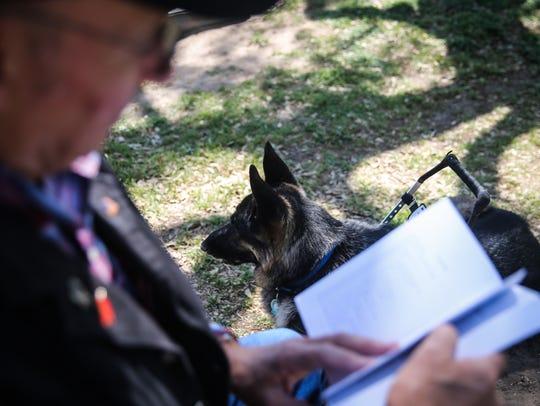 Rex, a German Shepherd service dog, sits on the grass