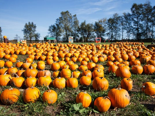 Guide to lake country pumpkin farms
