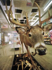 """In a file photo from 2001, a """"cornfield"""" buck greets"""