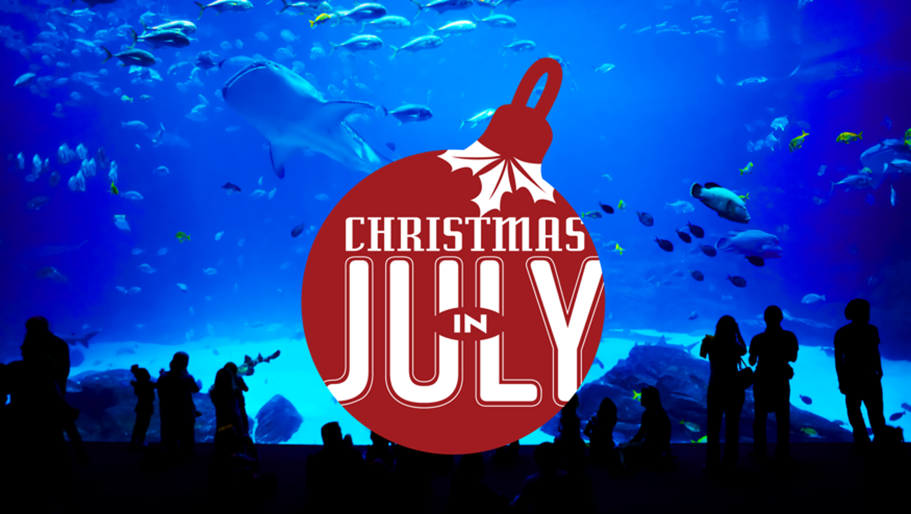 Christmas In July 7 Sharks A Swimming