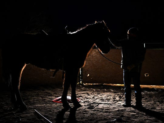 Finding the time when he can, trainer Kirk Ferris gets up before dawn to work with Judd the Wonder Stang at his home in the Washoe Valley on the morning of March 10, 2016.