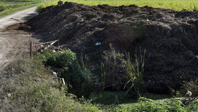 Dan Griffin Sod Co. land is seen Thursday, Dec. 29, 2016, on Willard Smith Road off of U.S. Highway 27 a few miles south of South Bay. The company dumped so much treated human waste on the sod farm in 2015 that Palm Beach County inspectors said it was like walking on raw sewage.