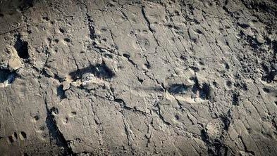 This undated photo provided by Raffaello Pellizzon in December 2016 shows fossilized footprints of a human ancestor, believed to be Australopithecus afarensis, at the Laetoli site in northern Tanzania. Findings were described in a report released Wednesday, Dec. 14, 2016, by the journal eLife.