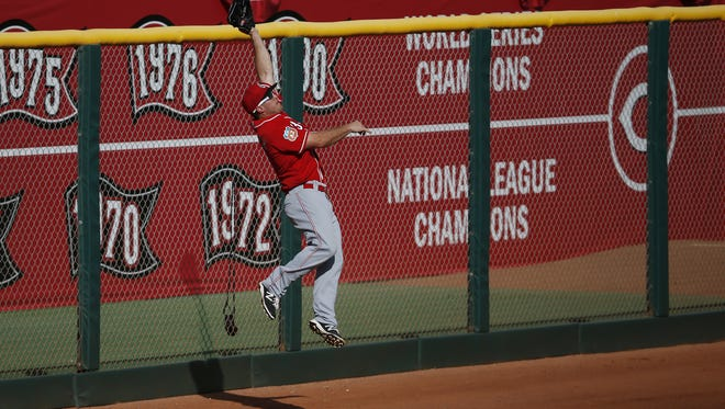 Cincinnati Reds outfielder Scott Schebler (43) leaps to catch a fly ball along the left-field wall in the eighth inning during the Cactus League game between the Cleveland Indians and Cincinnati Reds, Tuesday, March 1, 2016, at Goodyear Ballpark, in Goodyear, Arizona.