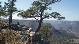 Public access will be available for the first time to Sabinoso Wilderness.