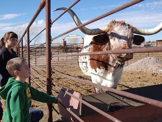 kids-longhorn.jpg
