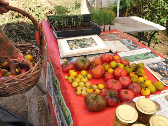 A table display at Uncle Tim's Pickled Pleasures shows various varieties of tomatoes grown from seeds from around the world.