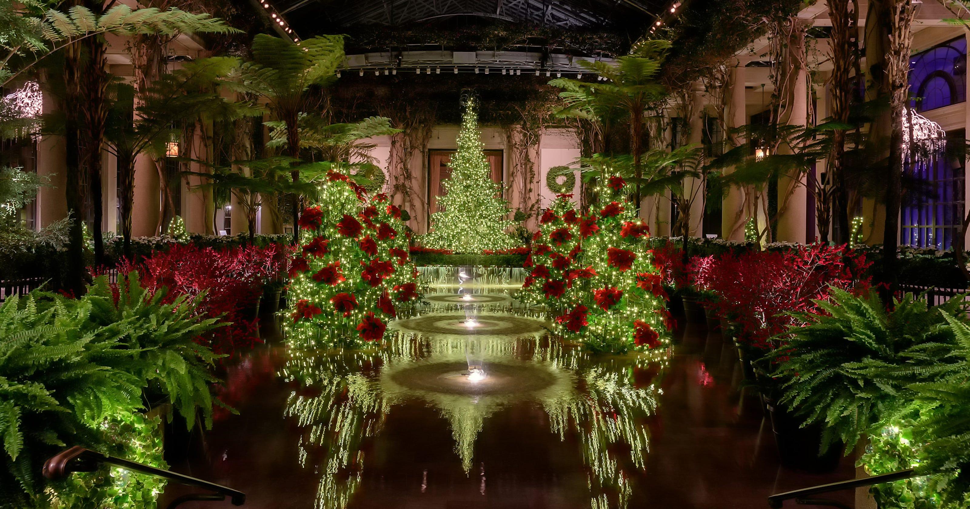 Longwood Gardens lights up holidays