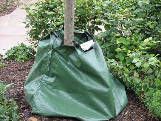 Tree gator bags are available at garden stores for watering young trees.