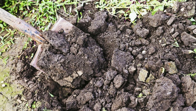 Spading or tilling in the fall allows clups to freeze and thaw during the winter, breaking into particles and makes it all easier to work in the spring.