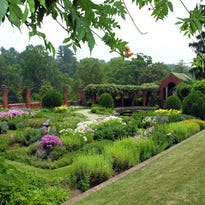 Plant a piece of history with cuttings from historic Vanderbilt gardens