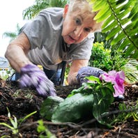Gardening: July is not a month for the faint of heart