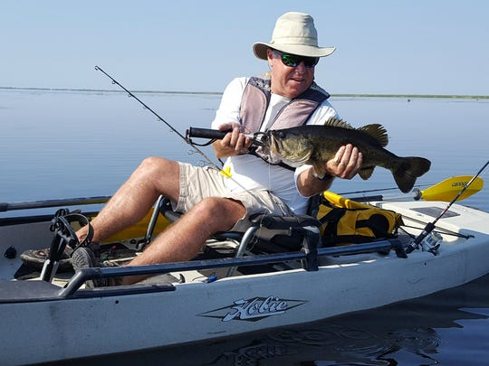 Malcolm Allen, of Orchid Island Bikes and Kayaks in Vero Beach, caught and released this bass during an outing on the Fellsmere Water Management Area. The waterway will be one of several open to anglers during the Toadfest on the Marsh Sunday.