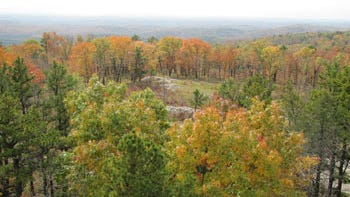 View beautiful fall color across the state, such as this display at Peck Ranch Conservation Area.