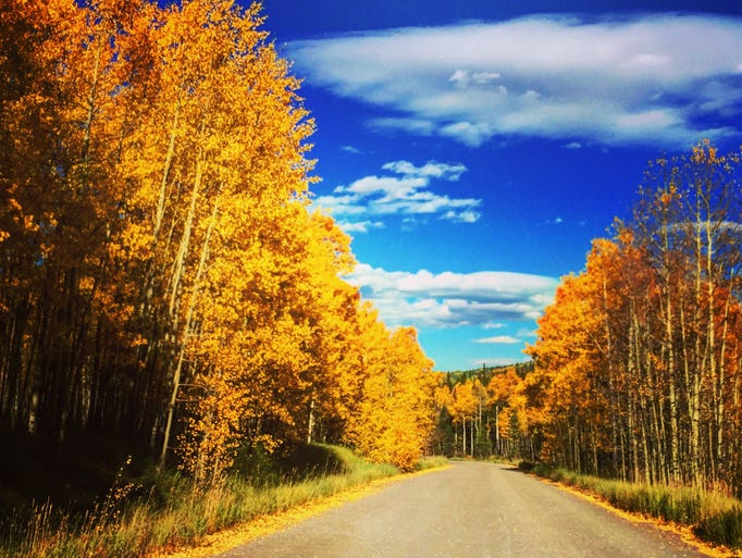 Fall Steamboat Springs Colorado Rocky Mountain Autos Post