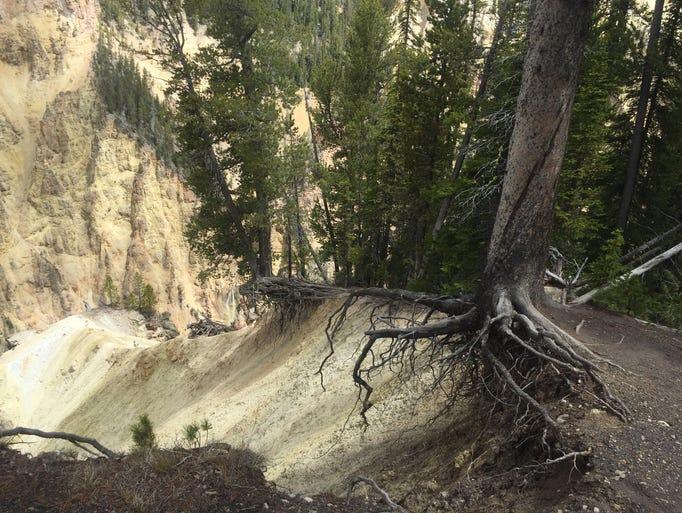 Photos Hikes That Make You Appreciate Nature