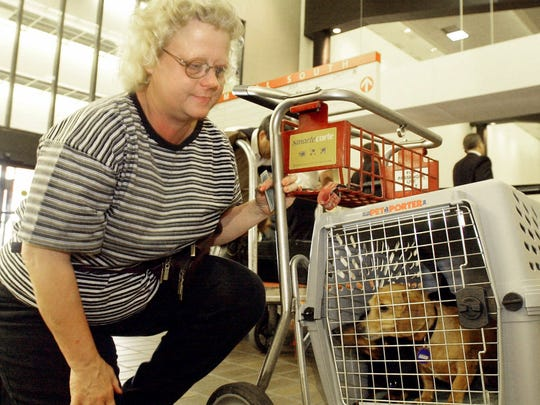 Since airlines all have their own company policy for the handling of animals that they transport, the USDOT said that travelers should investigate these policies before booking a trip with their animal.