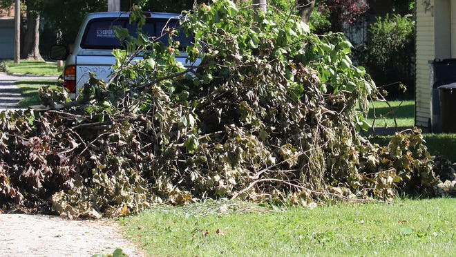 This pile of branches extends into the street and rises beyond six feet high. This pile was made after the branched and limbs were felled by high winds caused by Tropical Storm Cristolbal when it blew through the area earlier this week.