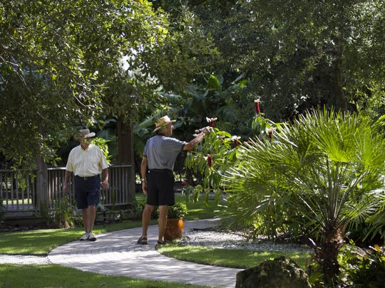 Bob Singel, right, and Jim Ebersole look at the blooms on the ginger plant at Berne Davis Gardens in Fort Myers. The gardens are open every Tuesday for tours.