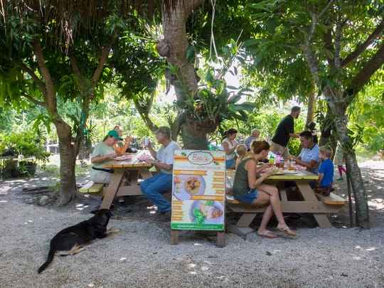 Under the shade trees is a favorite gathering spot for customers eating pupusas and drinking mango smoothies from Bea's Homemade Food after shopping for tropical fruit, eggs and fruit breads at Pine Island Tropicals market on Pine Island.