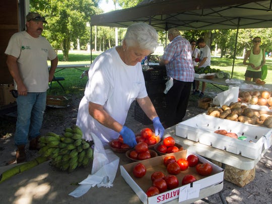 Anne Britton sorts tomatoes at the Green Market on Saturday. She and her husband Horace also sell produce on Thursdays at the downtown farmer's market.