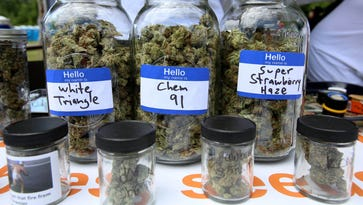 Michigan will allow one-stop shopping for some medical marijuana businesses