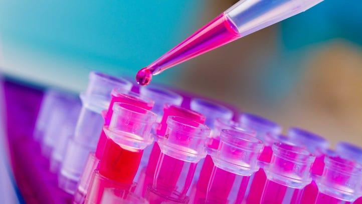 A genetics laboratory.